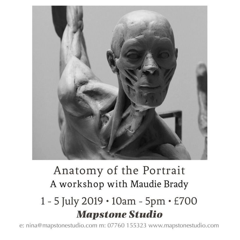 FB flyer brady anatomy 2